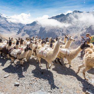 Voyage et randonnée Bolivie
